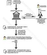 схема процедуры банкротства физического лица со списанием долгов